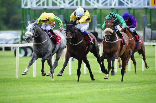 Cork Racecourse Mallow
